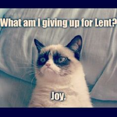 grumpy cat lent