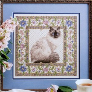 TC finished