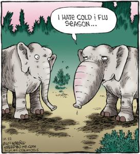 flu_ephant
