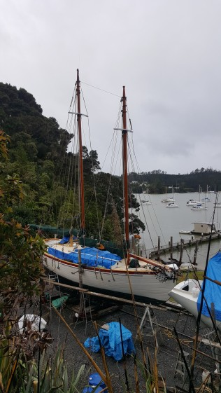 sailboat under repairs at Opua