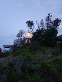 Lighthouse at Nobby's Point